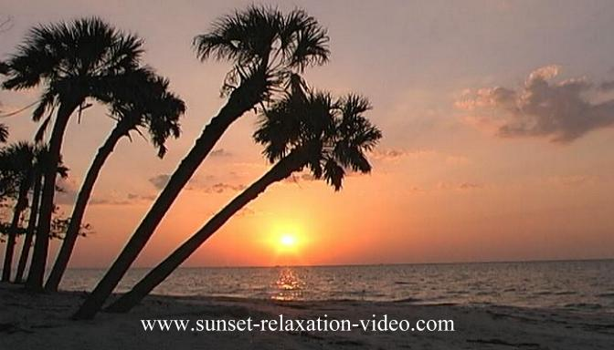 Sunset relaxation photograph of a sunset on a secluded palm treed beach